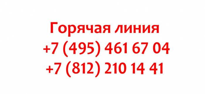 Kontakty-Dochki-Synochki.jpg