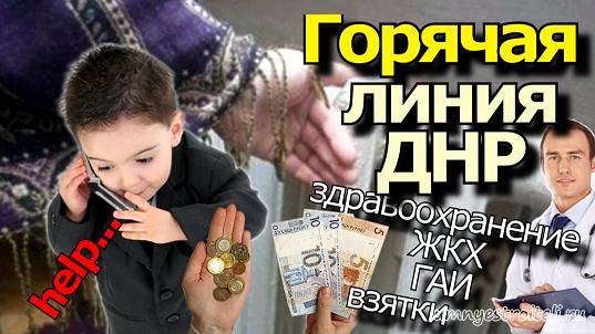 1541496238_goryachaya-liniya-dnr.png